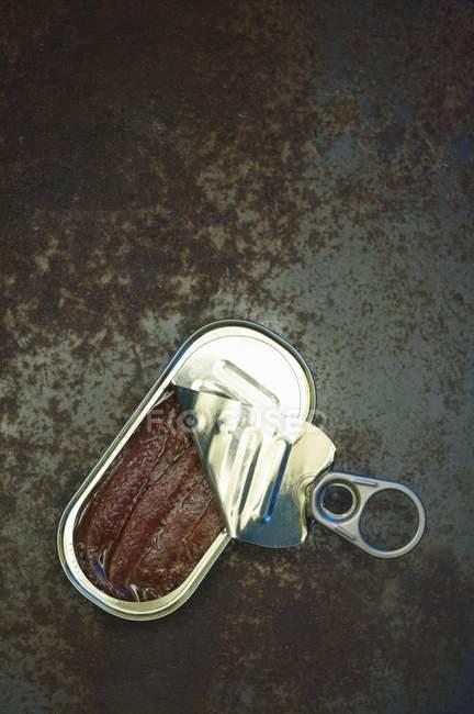 Частково відкритий анчоус олова — стокове фото