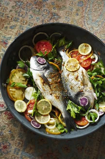Морський обсмаженої в сковороді з помідорами — стокове фото