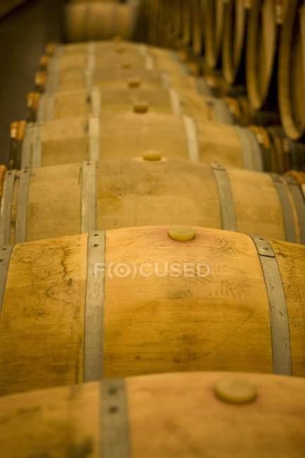 Vista elevada de linhas de barris de madeira na adega — Fotografia de Stock