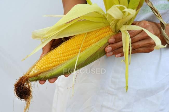 Woman holding corn cob — Stock Photo