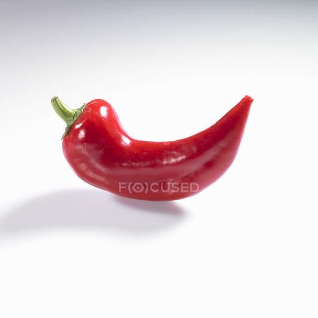 Red chilli pepper — Stock Photo