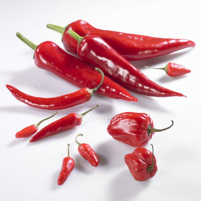 Chiles y piri-piri - foto de stock