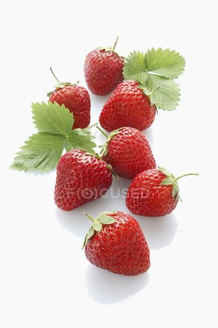 Fresas con hojas - foto de stock