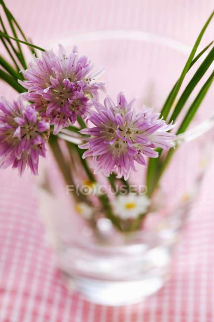 Свежий зеленый лук с цветами — стоковое фото