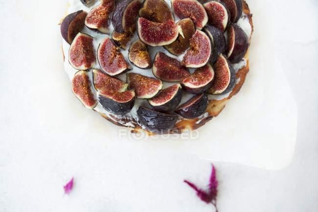 Вкусный сырный торт с инжиром — стоковое фото