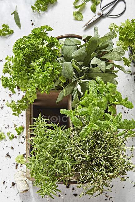 Fresh herbs in wooden crate — Stock Photo