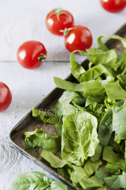 Spinach and cherry tomatoes — Stock Photo