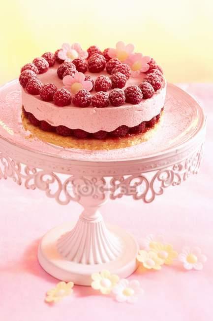 Torta del lampone su basamento della torta rosa — Foto stock