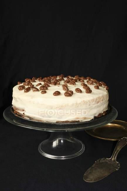Bolo de chocolate com creme — Fotografia de Stock