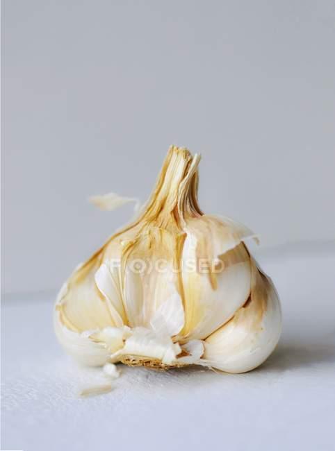Bulbo de ajo abierto - foto de stock