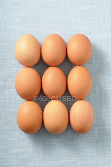 Девять коричневые яйца — стоковое фото