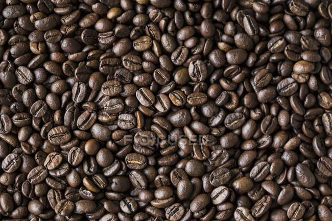 Granos de café enteros asados - foto de stock