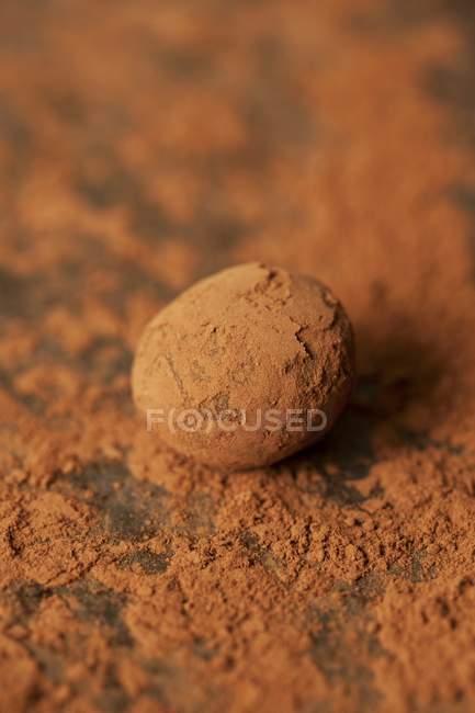 Трюфель, завернутые в какао-порошок — стоковое фото
