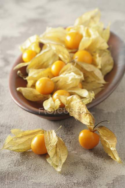 Ripe Physalis berries with capes — Stock Photo