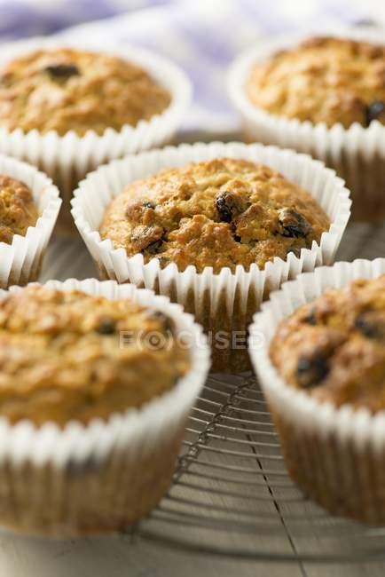 Muffins de albaricoque al horno - foto de stock