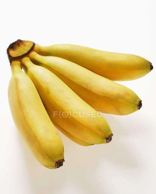 Yellow sugar bananas — Stock Photo