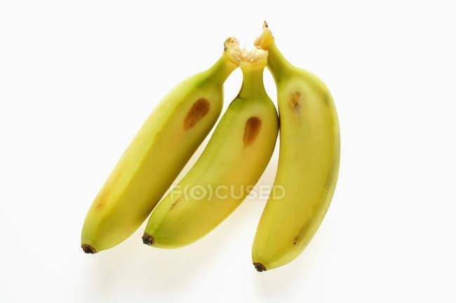 Свіжі стиглі банани міні — стокове фото
