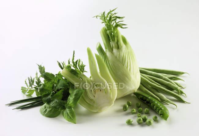 Naturaleza muerta con verduras y hierbas verdes sobre fondo blanco - foto de stock