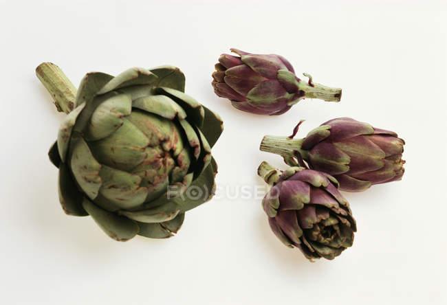 Зеленый и фиолетовый артишоки — стоковое фото