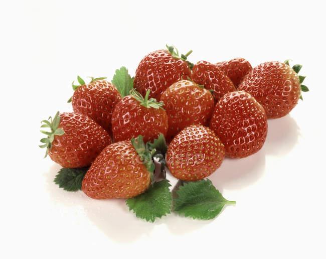 Fresas frescas maduras - foto de stock