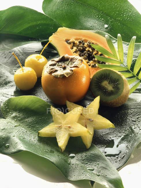 Frutta esotica — Foto stock