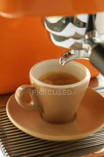 Cup of espresso on coffee machine — Stock Photo