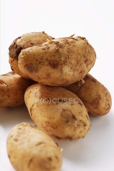 Verschiedene Rohe und frische Kartoffeln — Stockfoto