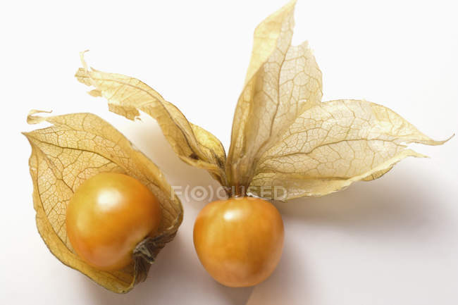 Physalis fruits with husks — Stock Photo