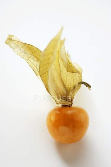 Physalis fruit with calyx — Stock Photo