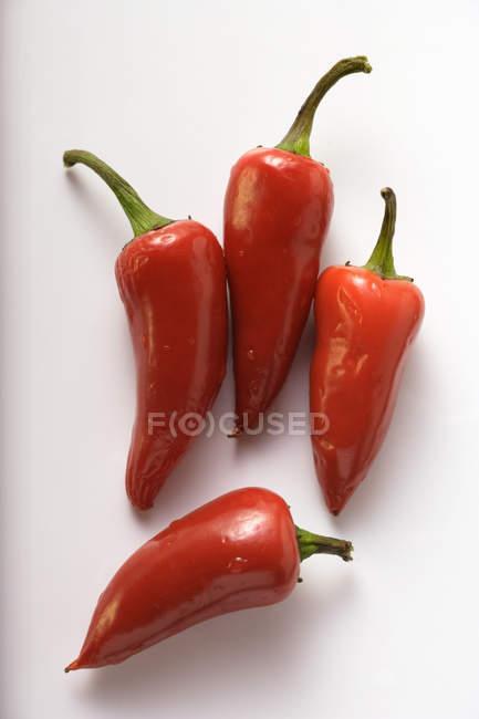 Свежий красный перец — стоковое фото
