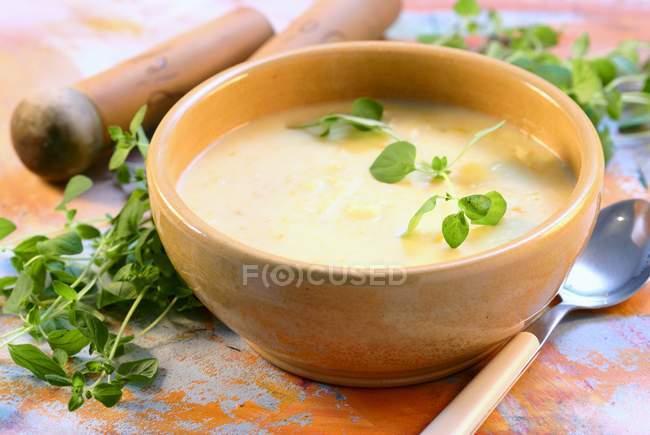 Sahne-Kartoffel-Suppe — Stockfoto