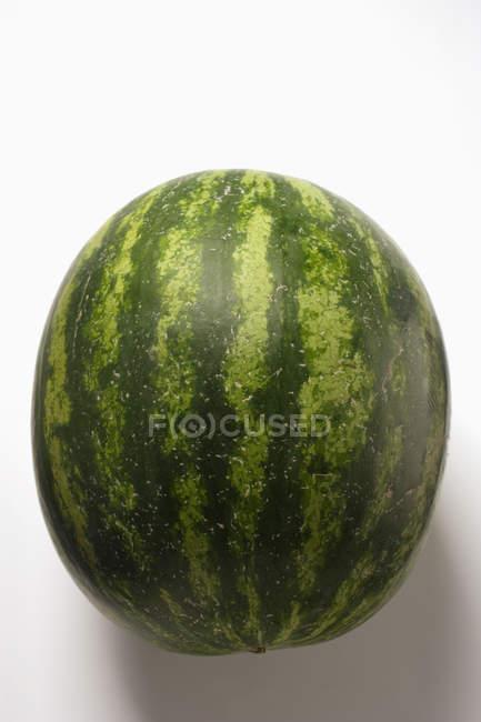 Ganze frische Wassermelone — Stockfoto