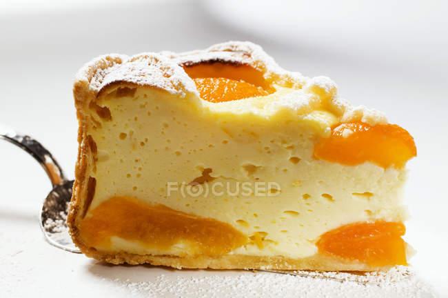 Кусок чизкейк с абрикосами — стоковое фото