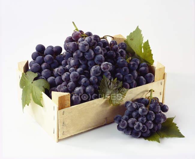 Crate of table grapes — Stock Photo