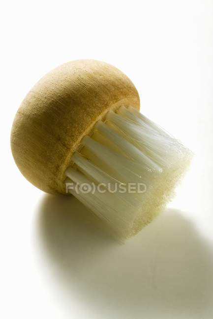 Closeup view of one small brush on white surface — Stock Photo