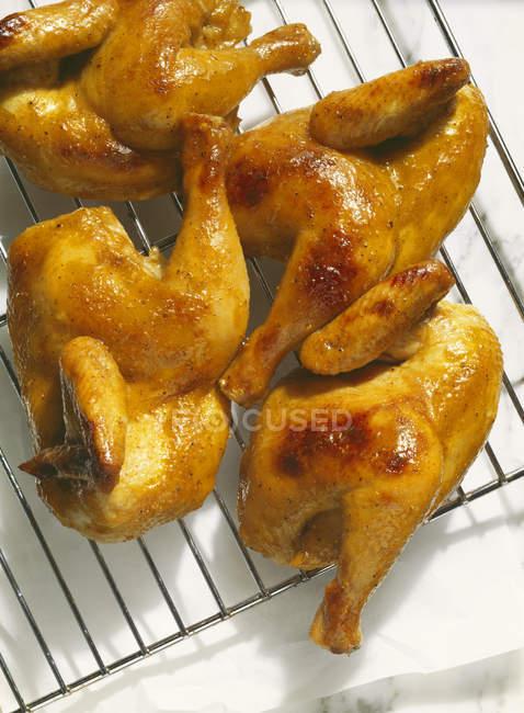 Honey-glazed chicken — Stock Photo