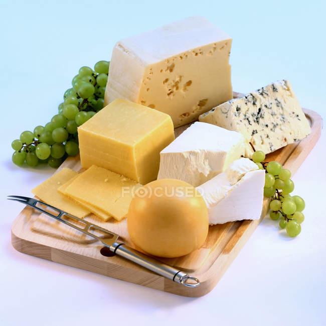 Несколько видов сыра — стоковое фото