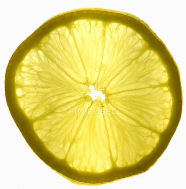 Frische Scheibe Zitrone — Stockfoto