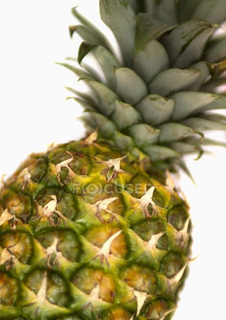 Piña fresca madura - foto de stock