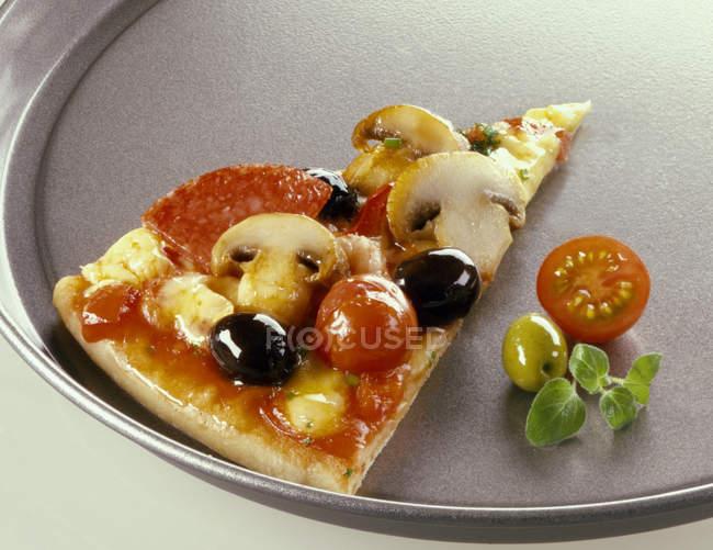 Pezzo di pizza con salame — Foto stock