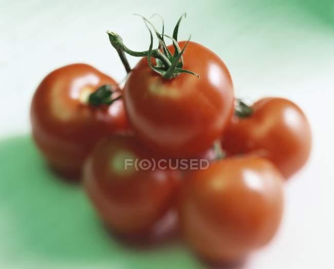 Fresh Ripe Red Tomatoes — Stock Photo
