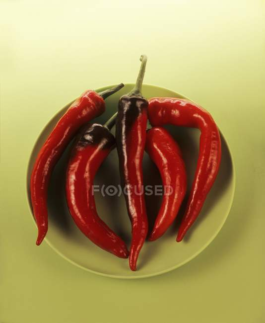 Five red chillies — Stock Photo