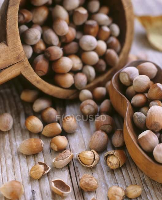Haselnüsse in Schalen über Holz — Stockfoto