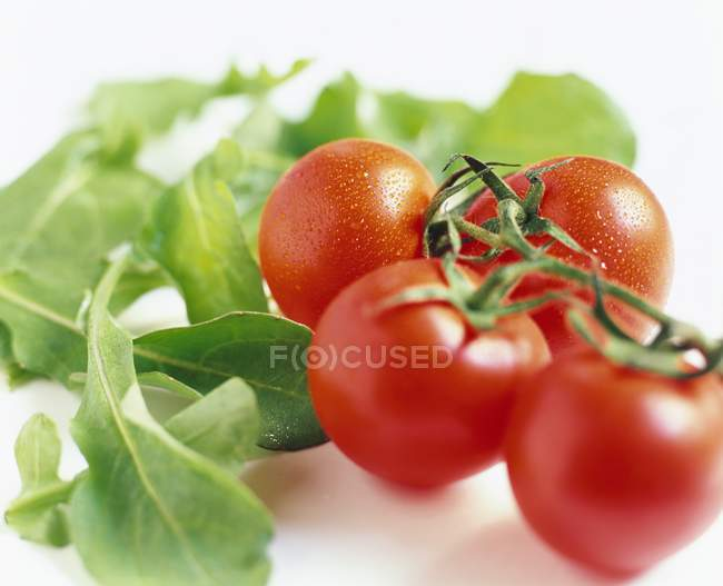 Tomatoes and salad leaves — Stock Photo