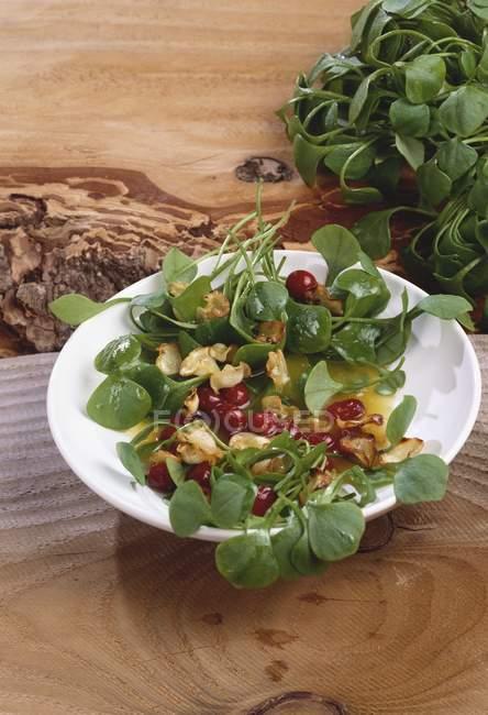 Wintersalat: Bergmannssalat mit Pastinakenchips und Preiselbeeren auf weißem Teller — Stockfoto