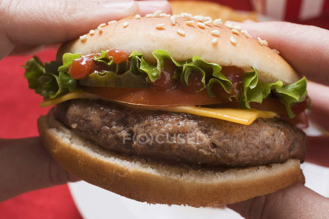 Hands holding cheeseburger — Stock Photo