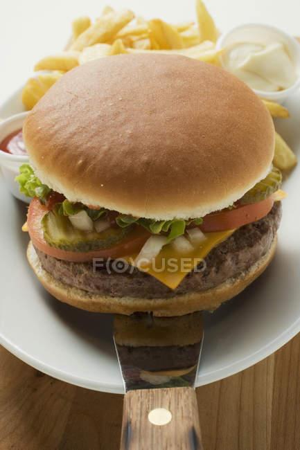 Hamburguesa con patatas fritas - foto de stock