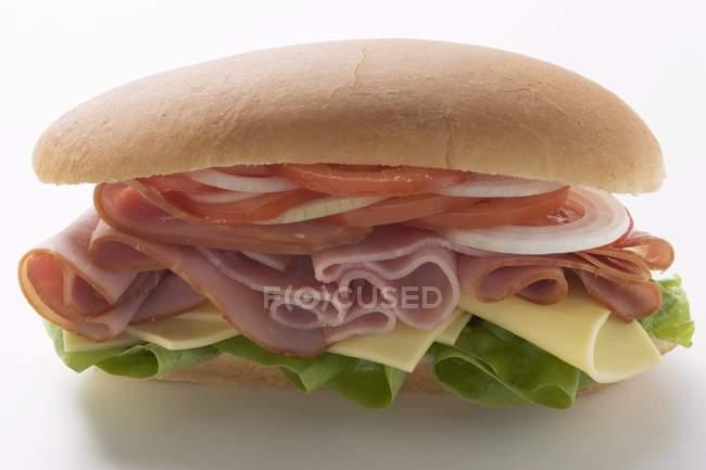 Sandwich sub au jambon — Photo de stock
