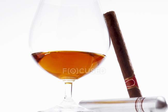 Glass of cognac and cigar — Stock Photo