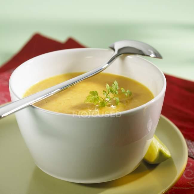 Karotten-Ingwer-Suppe mit Kerbel — Stockfoto